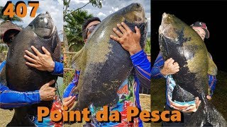 Tambas Gigantes no Point da Pesca - Fishingtur na TV 407