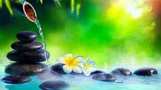 Relaxing Music 24/7, Reiki Healing Music, Meditation, Zen, Sleeping Music, Calm Music, Yoga, Study
