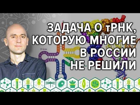 16. Задача о тРНК, которую многие в России не решили