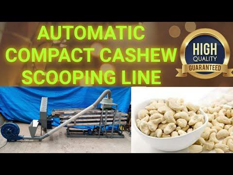 Cashew Scooping Line