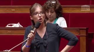 Gambar cover Chats : la drôle d'idée d'une députée à l'Assemblée