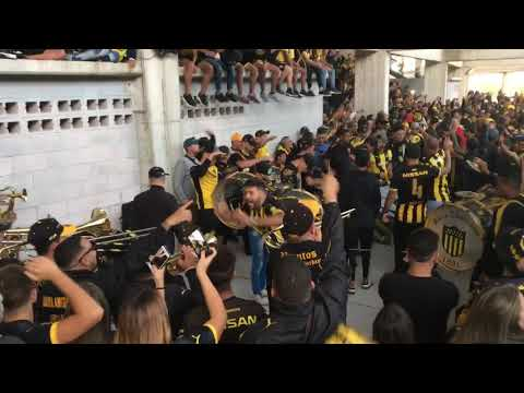 """""""Previa de la Percusión - Hinchada de Peñarol (vs Liverpool)"""" Barra: Barra Amsterdam • Club: Peñarol"""
