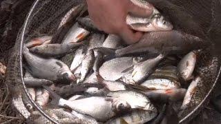 О рыбалке всерьез на фидер ранней весной