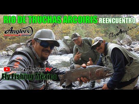 Reencuentro Amigos, Río de Truchas Arcoiris / Fly Fishing México Wild Trout 13