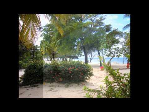 Cuba Guardalavaca tropical beach and Hotel Brisas **** Tropisch strand met palmbomen Holquin