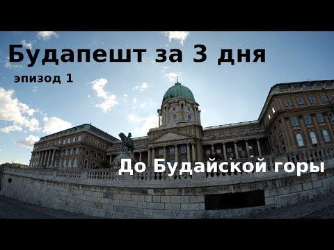 Топ самых богатых политиков россии
