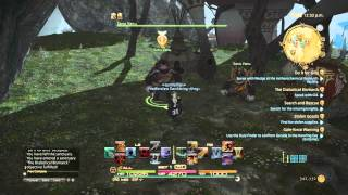 Guide to unlocking the expert roulette FFXIV HEAVENSWARD 3.05