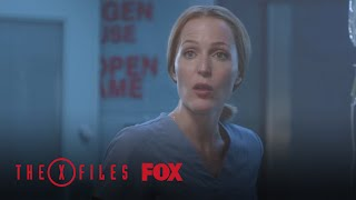 "THE X-FILES | Expecting from ""My Struggle"""