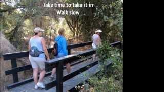 Karen Lynne - Walk Slow