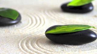 World music playlist awards 2015 compilation mix channel: Eastern Zen (1 Hour Video)