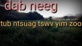 Dab Neeg Tub Ntsuag Tswv Yim Zoo