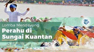 Pacu Jalur, Bagian dari Pesta Rakyat Kabupaten Singigi, Riau