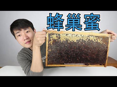 , title : '為什麼蜂巢蜜比蜂蜜更貴?花100元買一大塊蜂巢蜜,能榨出多少蜂蜜?  【衣谷水原】