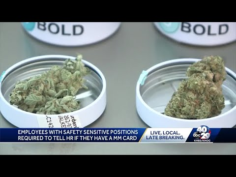 City of Springdale includes medical marijuana in drug -free workplace policy