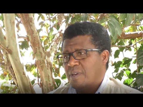 Towards Sustaining Development Gains in Eritrea