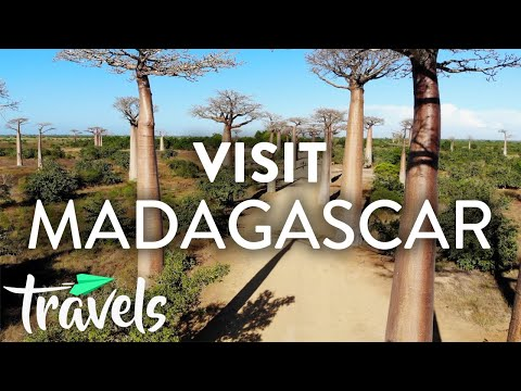 Top 10 Reasons to Visit Madagascar | MojoTravels