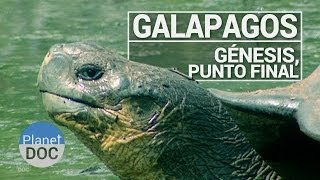 preview picture of video 'Galápagos. Génesis, Punto Final | Documental Completo - Planet Doc'