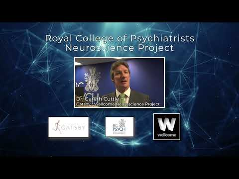 Thank you to the sponsors of the RCPsych Neuroscience Project