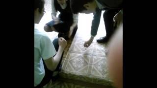 ПРикол с одноклассницей)))