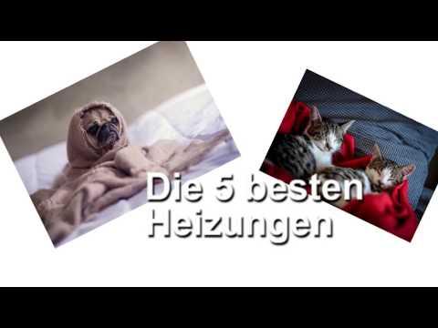 *Die 5 besten Heizkissen für Hunde & Katzen*
