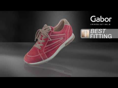 Gabor Best Fitting