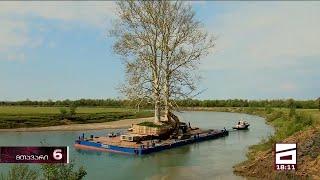 ივანიშვილის ხეების გადამტანმა კომპანიამ 2011 წლიდან დღემდე, 200 მილიონ ლარზე მეტის ტენდერი მოიგო
