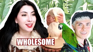 Pet YouTuber Reacts to SURPRISE Animal Videos | Emzotic by Emzotic