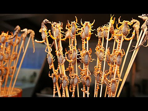 Chinese Street Food -  Live Scorpians, Insects, Tiger Claws