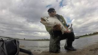 mission bay fly fishing