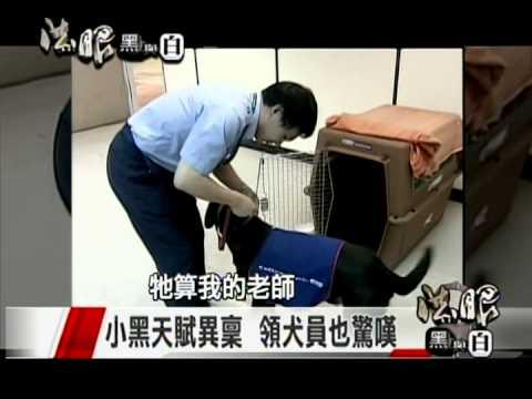 東森電視台-法眼黑與白-國境緝毒特別報導4(第一隻緝毒犬)