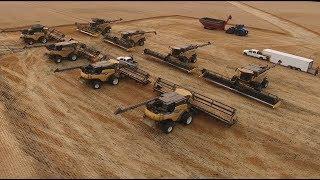 Wheat harvest 2017. Canada.
