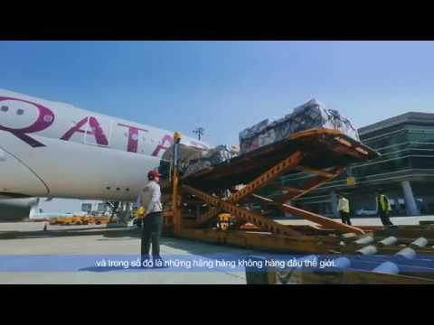 Video của Indo Trans Logistics Corporation 1