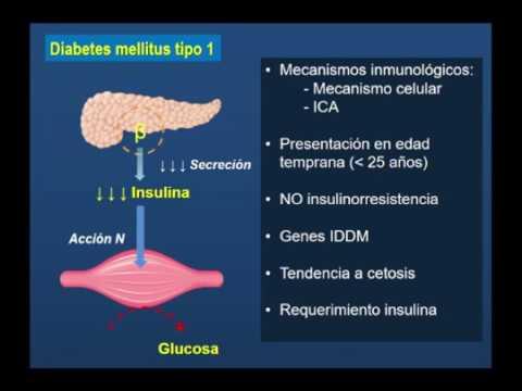Preço insulina no Permiano
