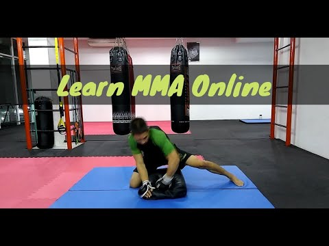 Enter the 37th Chamber - Learn MMA Online