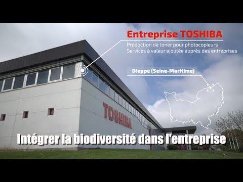 Biodiversité dans l'entreprise : Toshiba Dieppe