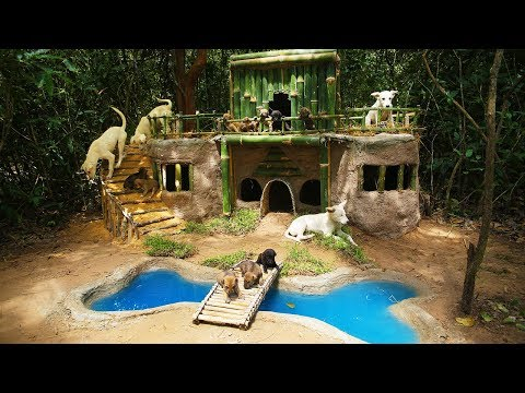 Rescue Newborn Puppy And Start Building Luxurious Dog Home