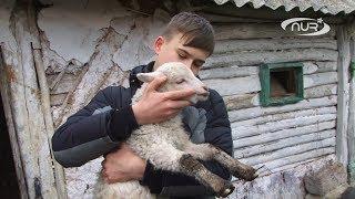 Фермеру-восьмикласснику требуется помощь