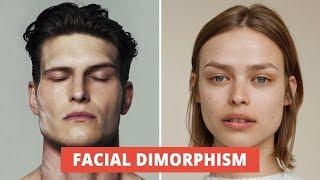 What Makes A Male And Female Face? The Secret Of Sexual Dimorphism