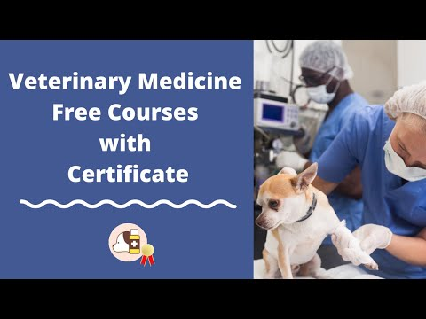 Veterinary Medicine Free Online Courses with Certificate