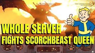 Fallout 76 (Part 38) WHOLE SERVER FIGHTS SCORCHBEAST QUEEN + PRIME FISSURE ENEMIES!
