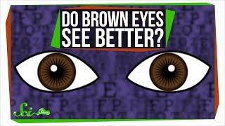 Do Brown Eyes See Better? - Video Youtube