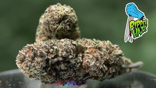 Marijuana Monday   Ripper HAZE Aka Amnesia Haze!🔥🔥🔥