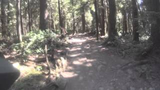 Very technical - what you hear of from Vancouver North Shore Trails.