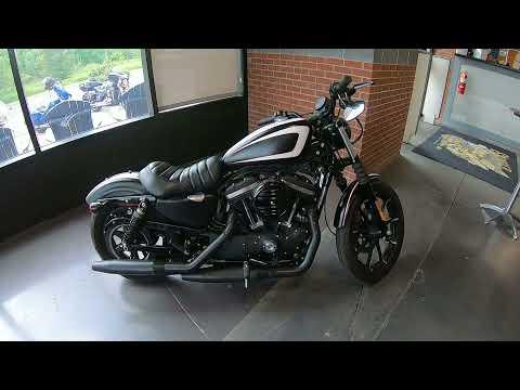 2019 Harley-Davidson Sportster Iron XL 883