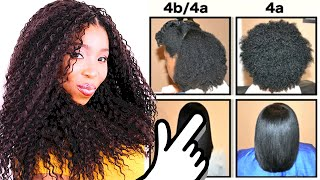 Natural Hair Types EXPLAINED In Detail w/ PICTURES! 4C 4B & 4A HAIR CHART!