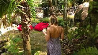 Daintree Secrets Rainforest Sanctuary