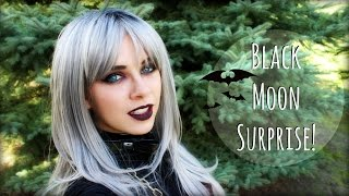 Black Moon, Fairies, a Vampire, and a WEBSITE!?! | The Magic Crafter