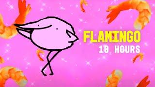 Flamingo 10 Hours