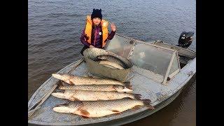 Отчеты о рыбалке троллингом