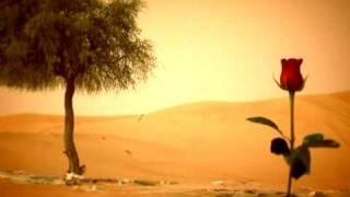 اغنية الأماكن عود بصوت محمد عبده مونتاج قناة البوادي مونتاج محمد الدليمي تحميل MP3